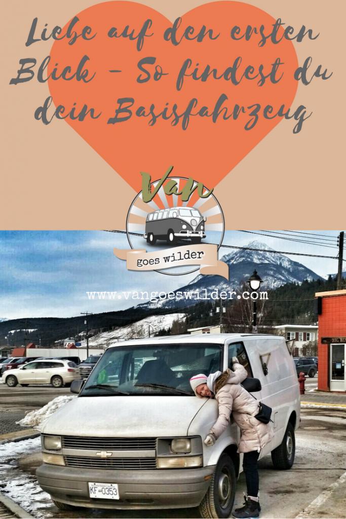 Van-goes-wilder-Liebe-auf-den-ersten-Blick-so-findest-du-dein-Basisfahrzeug